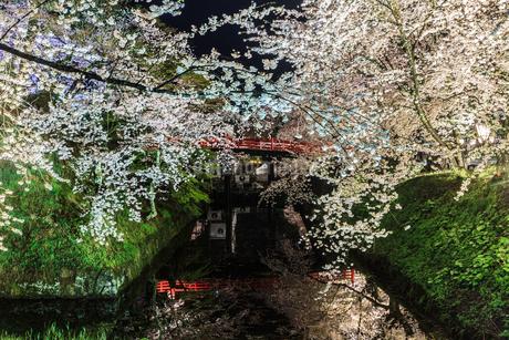 春のライトアップされた弘前城跡の風景の写真素材 [FYI01253798]