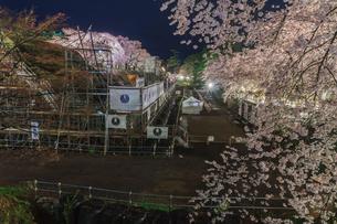 下乗橋から見た春のライトアップされた弘前城跡の修復中の石垣の風景の写真素材 [FYI01253806]