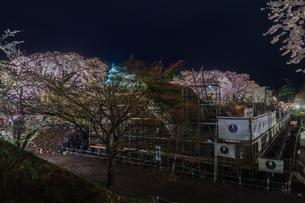 下乗橋から見た春のライトアップされた弘前城跡の修復中の石垣と移転した天守の風景の写真素材 [FYI01253808]