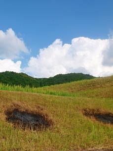 北海道の大地の写真素材 [FYI01254083]