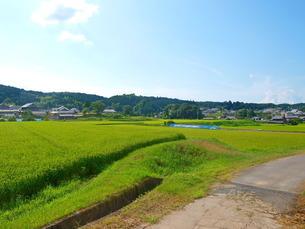 北海道の大地の写真素材 [FYI01254084]