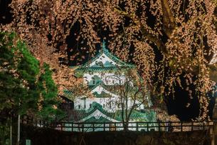 春のライトアップされた弘前城跡の移転した天守の風景の写真素材 [FYI01254125]