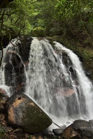 滝の写真素材 [FYI01254152]