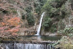 山奥の滝の写真素材 [FYI01254158]