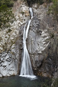 滝の写真素材 [FYI01254159]