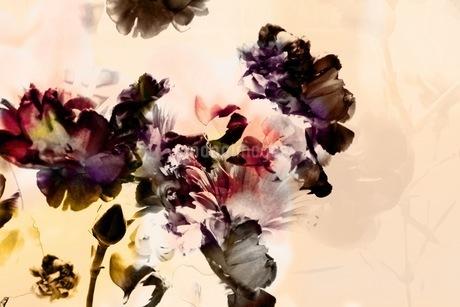 グラフィカルな花のグラフィック素材の写真素材 [FYI01254270]