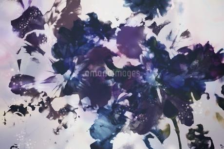 グラフィカルな花のグラフィック素材の写真素材 [FYI01254276]