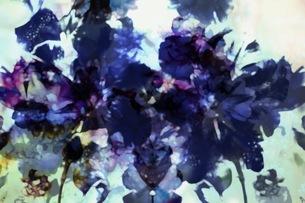 グラフィカルな花のグラフィック素材の写真素材 [FYI01254278]