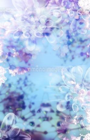 グラフィカルな花のグラフィック素材の写真素材 [FYI01254288]