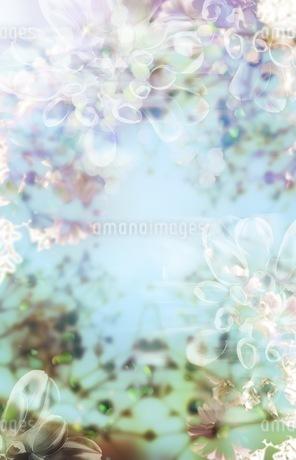 グラフィカルな花のグラフィック素材の写真素材 [FYI01254289]