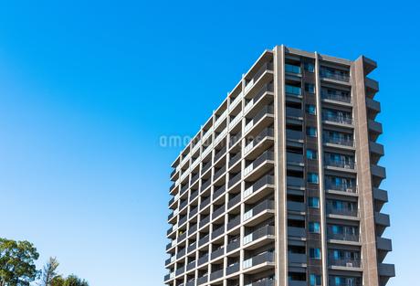 青空とマンションの写真素材 [FYI01254422]