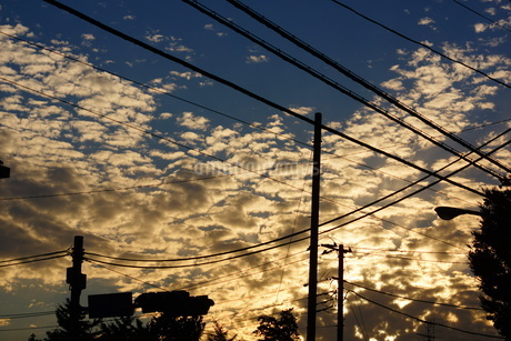 電線と夕焼けの写真素材 [FYI01254520]