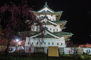 春のライトアップされた弘前城跡の移転した天守の風景の写真素材 [FYI01254542]