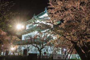 春のライトアップされた弘前城跡の移転した天守の風景の写真素材 [FYI01254545]