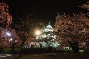 春のライトアップされた移転した弘前城跡の天守の風景の写真素材 [FYI01254553]