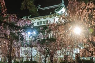 春のライトアップされた移転した弘前城跡の天守の風景の写真素材 [FYI01254555]
