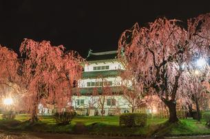 春のライトアップされた移転した弘前城跡の天守の風景の写真素材 [FYI01254556]