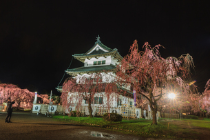春のライトアップされた移転した弘前城跡の天守の風景の写真素材 [FYI01254559]