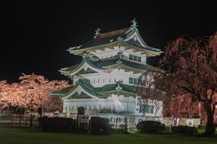 春のライトアップされた移転した弘前城跡の天守の風景の写真素材 [FYI01254561]
