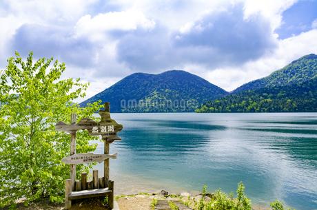 静寂の然別湖の写真素材 [FYI01254803]