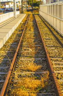 廃線のイメージの写真素材 [FYI01254883]