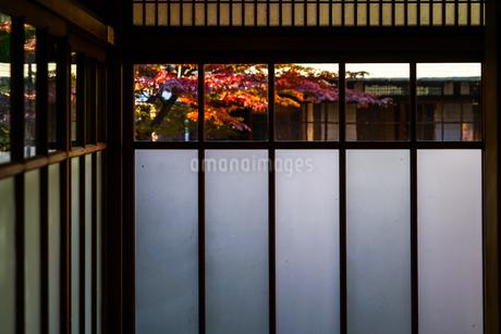 日本家屋のイメージの写真素材 [FYI01254889]