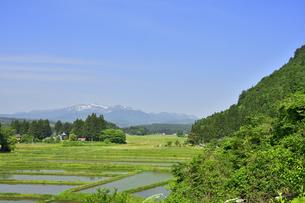 すがすがしい平泉荘園 骨寺の水田の写真素材 [FYI01255076]