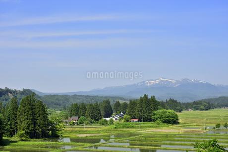 すがすがしい平泉荘園 骨寺の水田の写真素材 [FYI01255083]