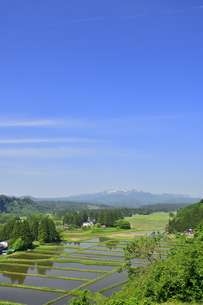 すがすがしい平泉荘園 骨寺の水田の写真素材 [FYI01255085]