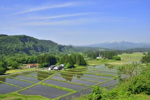 すがすがしい平泉荘園 骨寺の水田の写真素材 [FYI01255087]