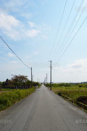 直線の一本道の写真素材 [FYI01255171]