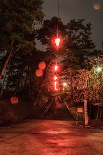 春のライトアップされた久保田城跡の風景の写真素材 [FYI01255206]
