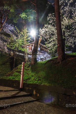 春のライトアップされた久保田城跡の長坂門跡の風景の写真素材 [FYI01255208]