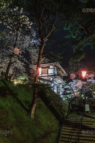 春のライトアップされた久保田城跡の風景の写真素材 [FYI01255210]