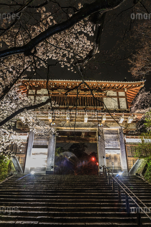 春のライトアップされた久保田城跡の風景の写真素材 [FYI01255214]