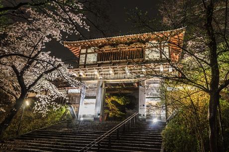 春のライトアップされた久保田城跡の風景の写真素材 [FYI01255216]