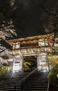 春のライトアップされた久保田城跡の風景の写真素材 [FYI01255218]