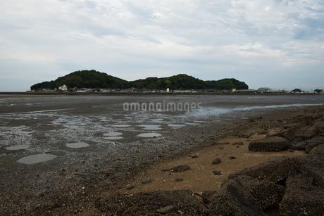 干潟と向こう岸に見える島の写真素材 [FYI01255219]