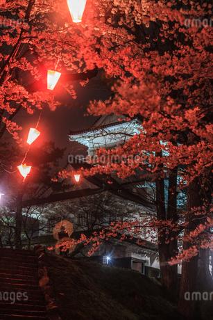 春のライトアップされた久保田城跡の御隅櫓の風景の写真素材 [FYI01255222]