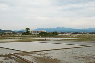 水田と街並みの写真素材 [FYI01255846]
