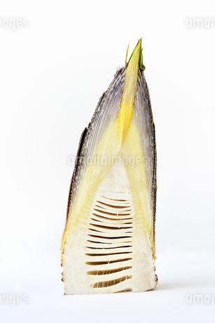 半分に切った筍の写真素材 [FYI01255874]