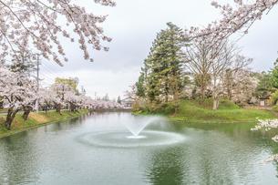 春の新庄城跡の風景の写真素材 [FYI01255997]