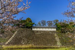 春の江戸城の蓮池濠と富士見多門の写真素材 [FYI01256160]