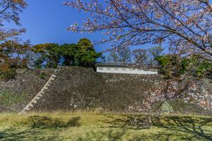 春の江戸城の蓮池濠と富士見多門の写真素材 [FYI01256161]