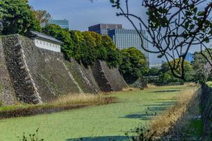 春の江戸城の蓮池濠と富士見多門の写真素材 [FYI01256165]