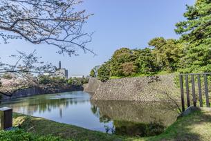 春の江戸城の乾濠の風景の写真素材 [FYI01256175]