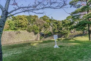 春の江戸城の乾濠の風景の写真素材 [FYI01256176]