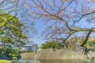 春の江戸城の乾濠と北桔橋門の風景の写真素材 [FYI01256178]