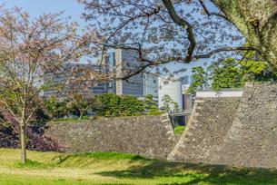 春の江戸城の乾濠と北桔橋門の風景の写真素材 [FYI01256181]