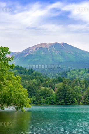 静寂の湖オンネトーの写真素材 [FYI01256339]